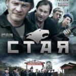 Стая (сериал 2009)