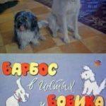 Барбос в гостях у Бобика (фильм 1964)
